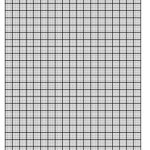 31 Free Printable Graph Paper Templates PDFs And Docs